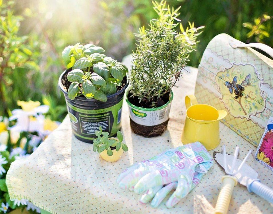 arreglar un jardín