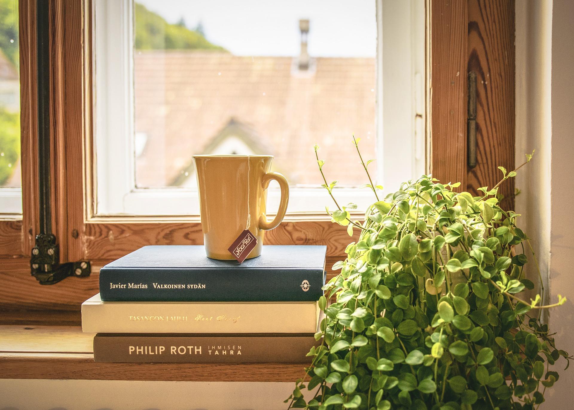 Riego plantas interiores