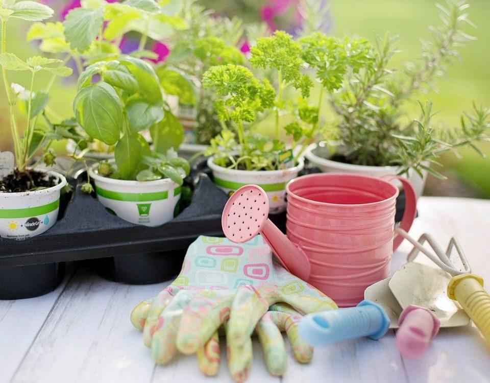 tendencias de jardinería
