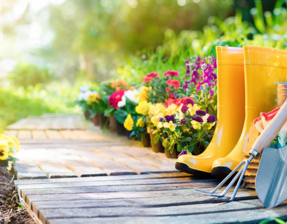 Tendencias de jardinería para 2021