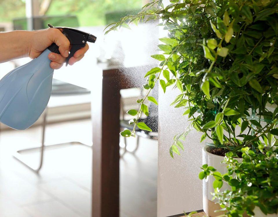 proteccion y cuidado de las plantas
