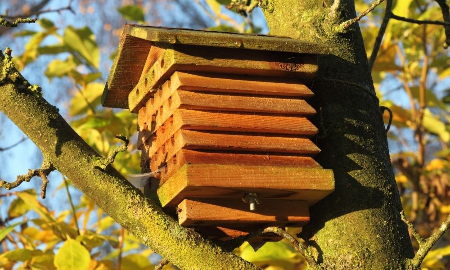 refugio para abejas